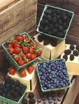 mixed berriesk7229-19i