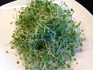watercress-sprouts